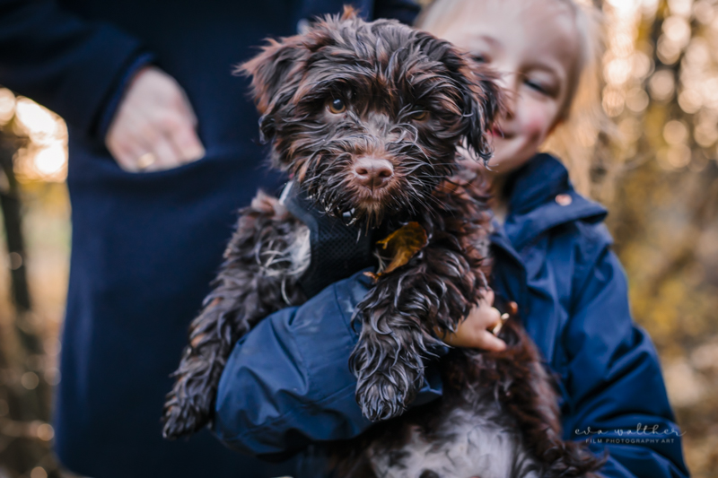 familiefotografering-hund